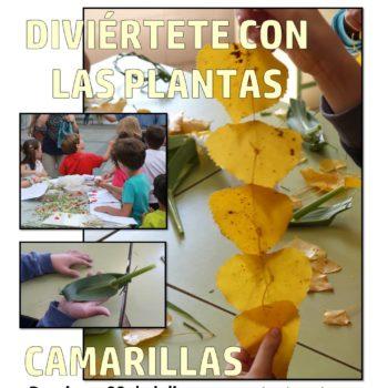 DIVERTIRSE CON LAS PLANTAS EN CAMARILLAS