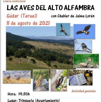 LAS AVES DEL ALTO ALFAMBRA